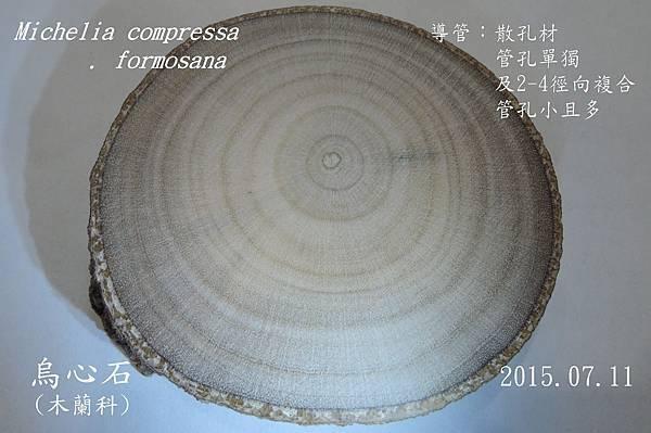 022MICO33烏心石
