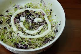 「(食譜分享)紫高麗芽苗養生沙拉」的圖片搜尋結果