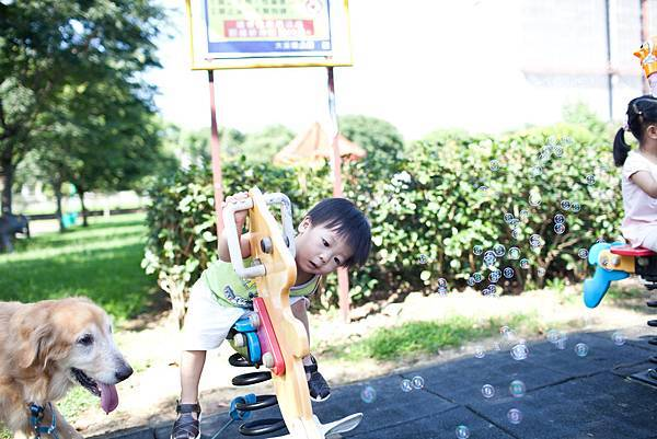 20130525_大溪埔頂公園踏青 (137)
