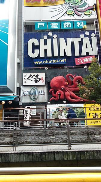 章魚ㄉ眼睛.jpg