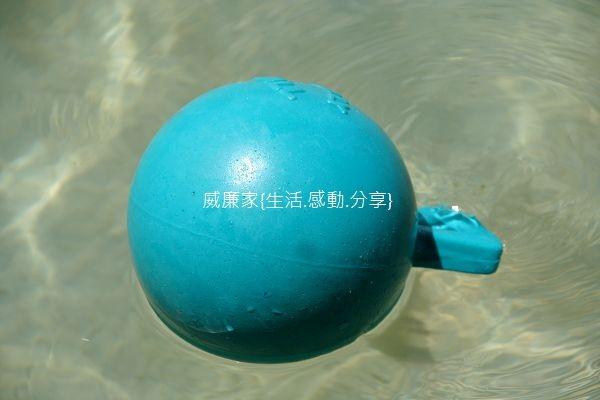 游泳 31.jpg