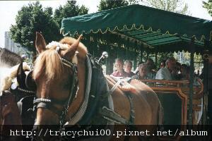 stanley_park_ride.jpg