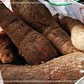 樹薯_20131208-1.jpg