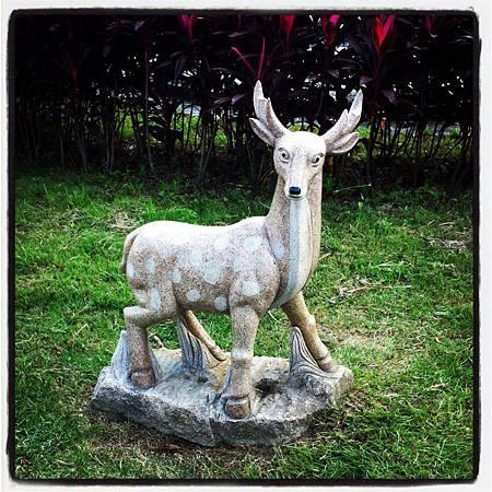 2011-1124 ~小鹿班比~