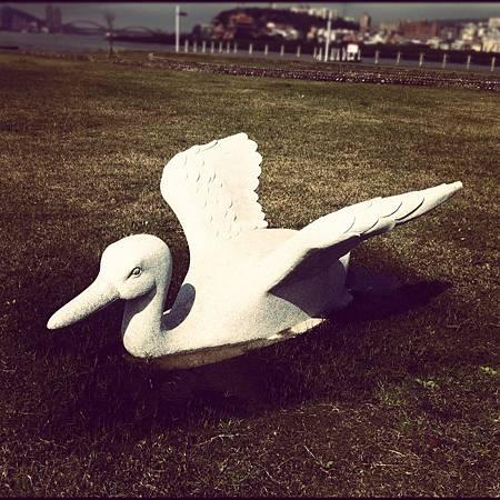 2012-0230 ~綠頭鴨~