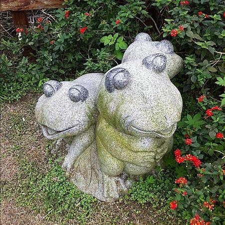 2012-0419 ~青蛙家族~