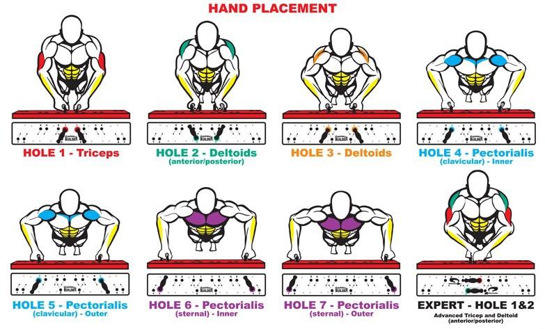 apc smart ups diagram 【健身q&a】伏地挺身練哪裡? @ 霍爾的健身城堡 :: 痞客邦