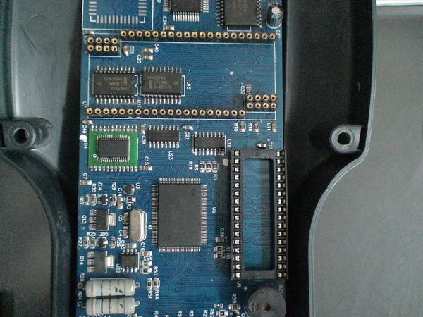 DSC08008.JPG