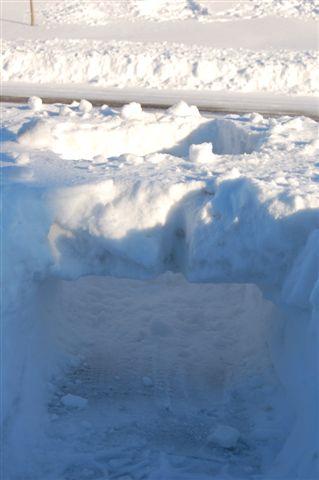 """Icy """"Bridge"""""""
