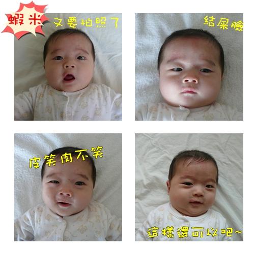 20080405_head photo.jpg