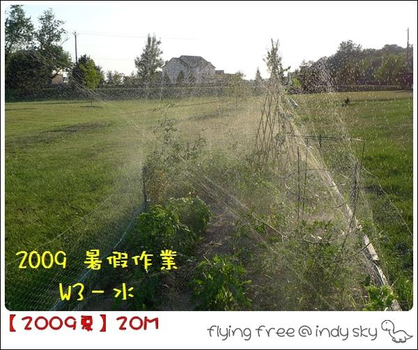 200907_Watering5.jpg