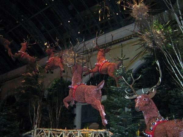 百樂宮2006聖誕節主題1