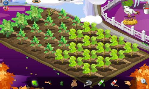 090912_farm2.jpg