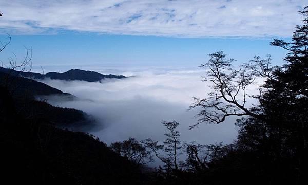 觀霧國家森林遊樂區_30000146