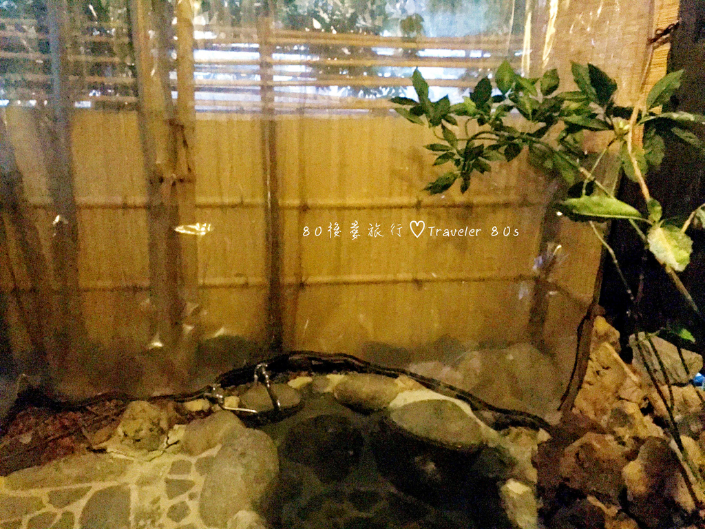 42 山莊松屋 (19)_MFW.jpg