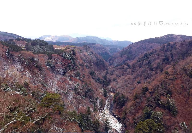 38 九重夢大橋 (33)_MFW.jpg