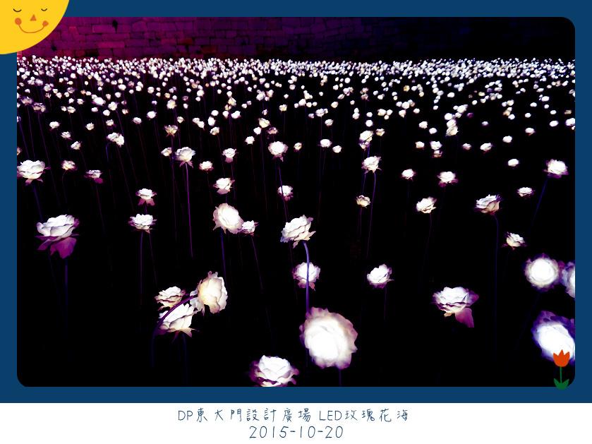 07-1 DDP (20)_副本.jpg