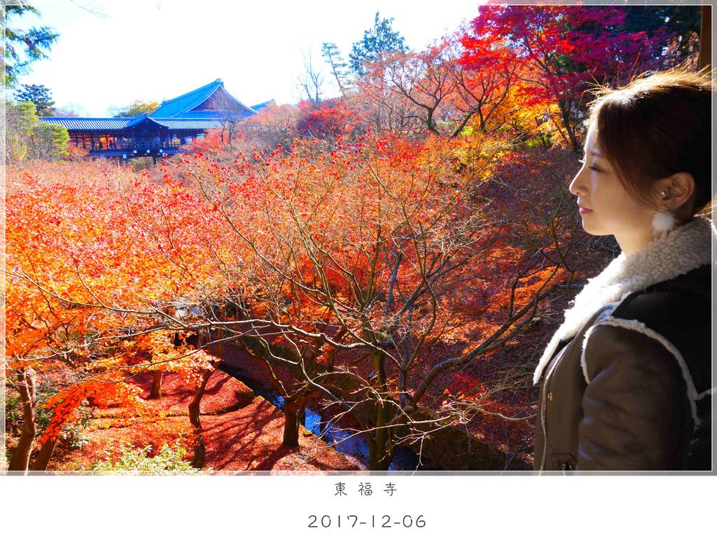 29 東福寺 (39)_副本.jpg