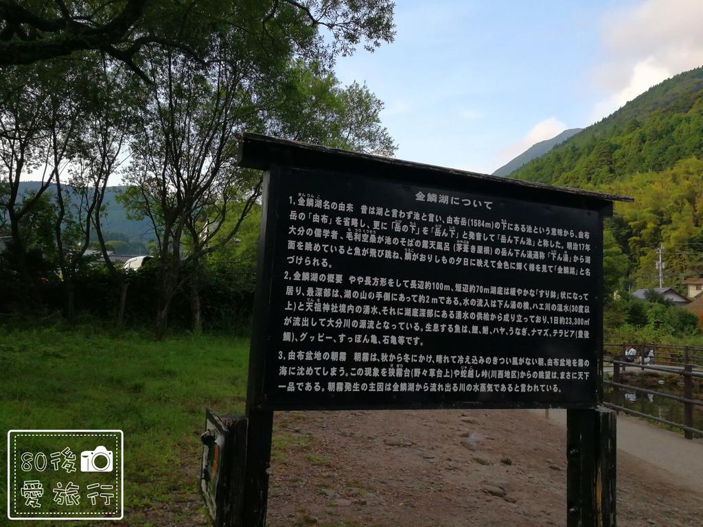 41金鱗湖 (3)_MFW.jpg