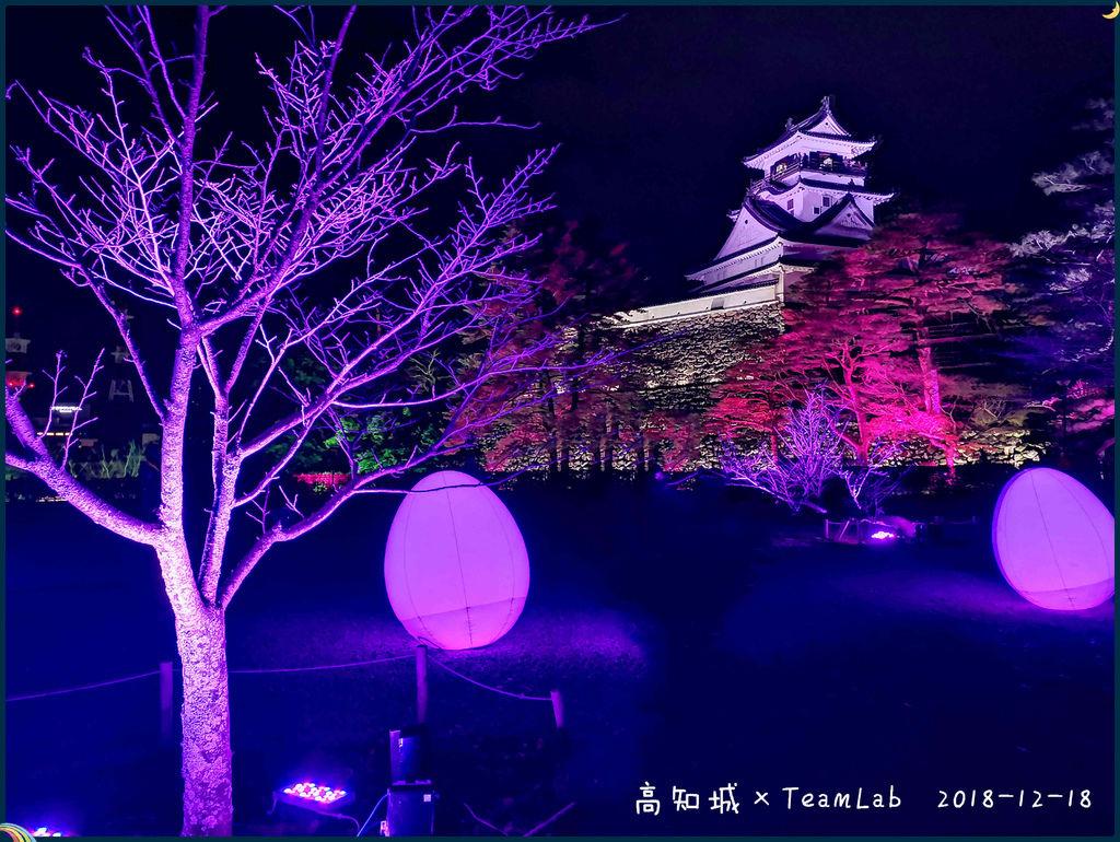 高知城TeamLab.jpg