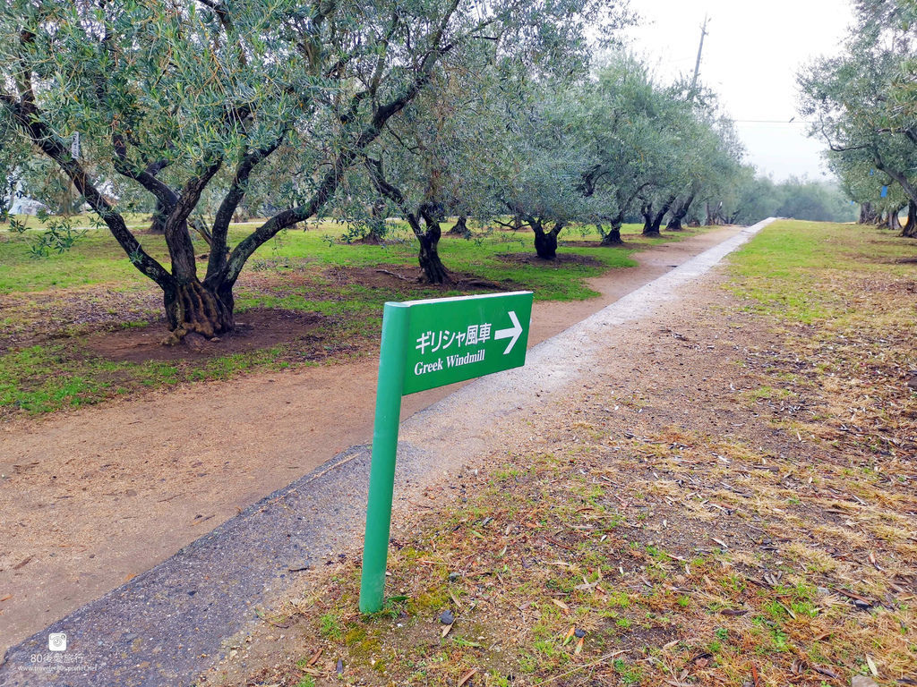 61 橄欖公園 (40)_MFW.jpg