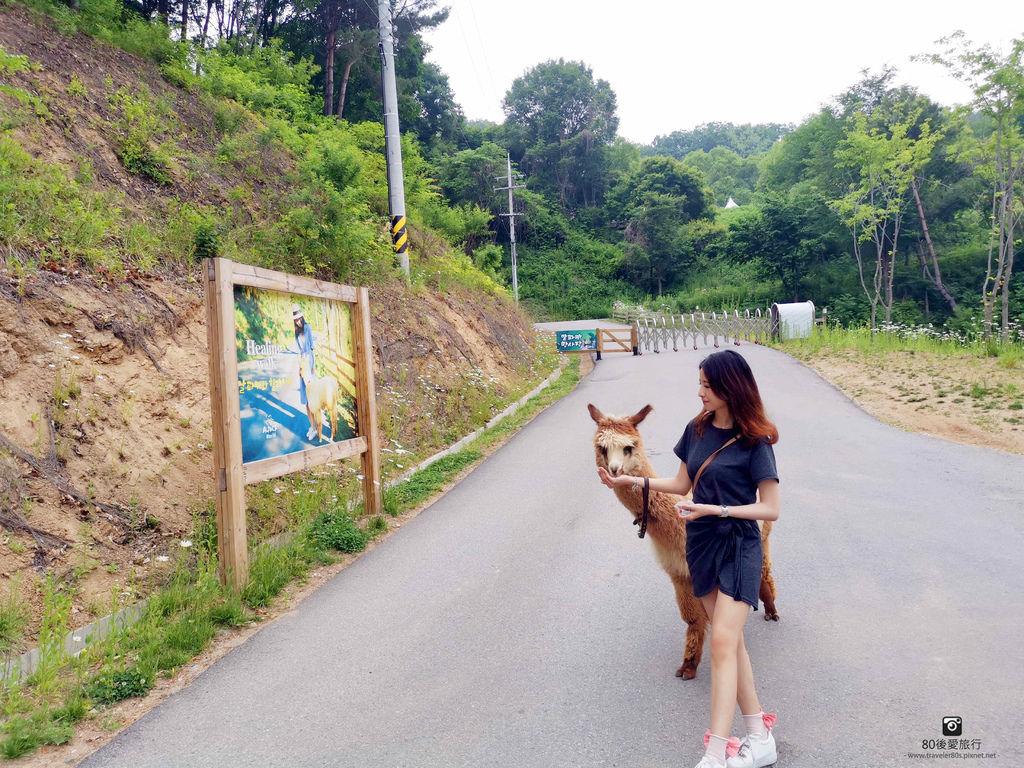 11 草泥馬牧場 (491)_MFW.jpg