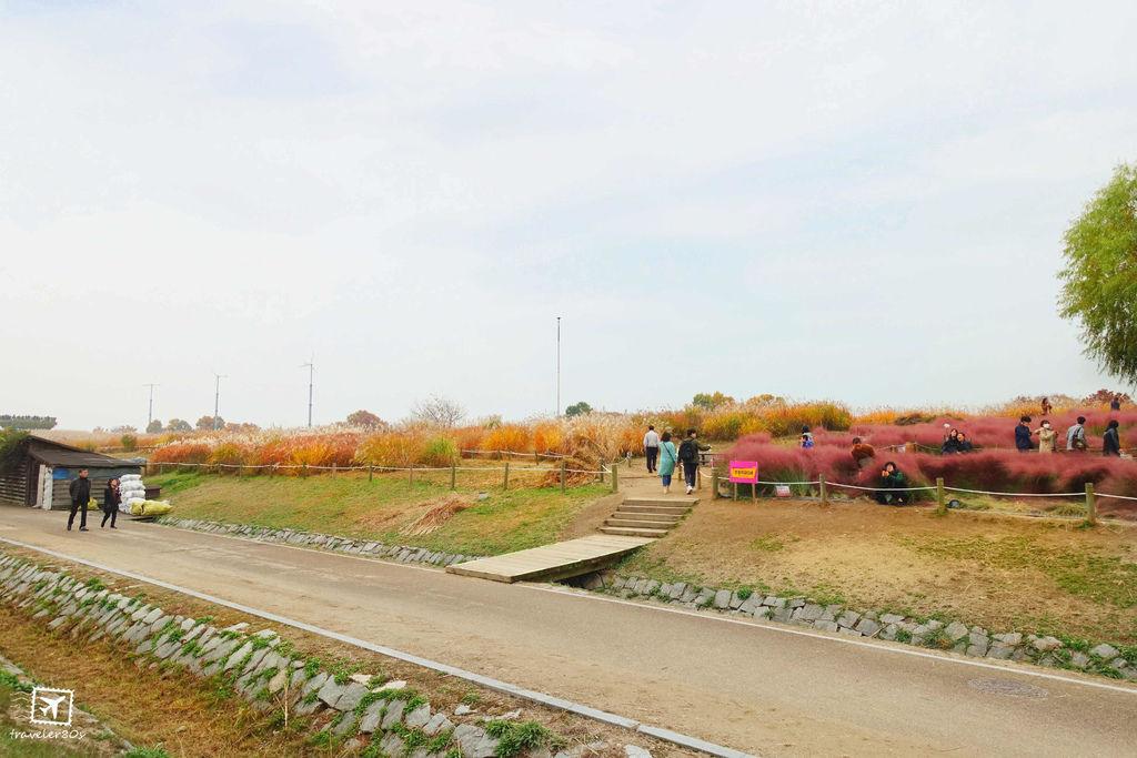 20 天空公園 (16)_MFW.jpg