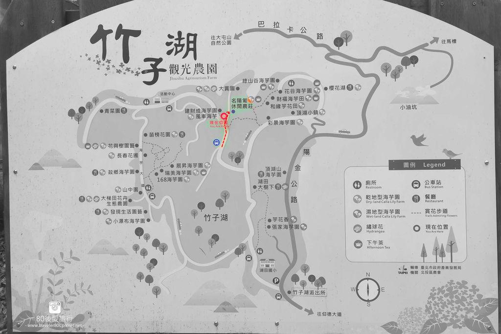 陽明山海芋 (7)_副本.jpg