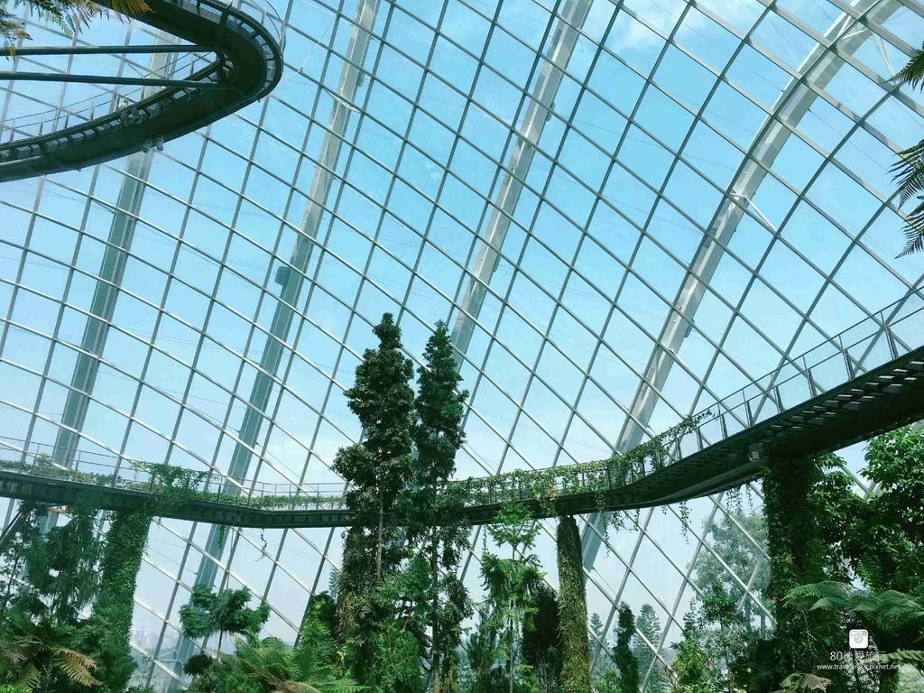 44_Cloud Dome (31)_mh1593323001008_compress67.jpg