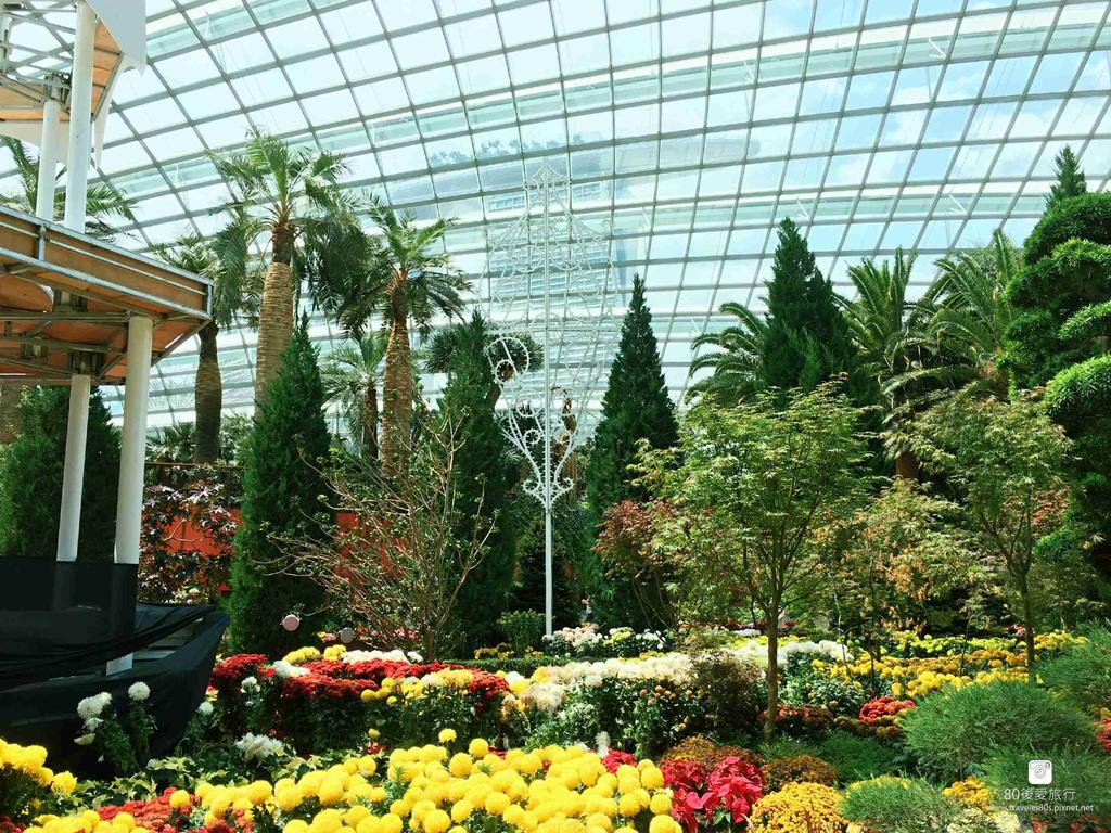 43_Flower Dome (110)_mh1593269243507_compress76.jpg