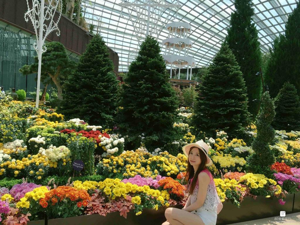 43_Flower Dome (77)_mh1593268826005_compress2.jpg