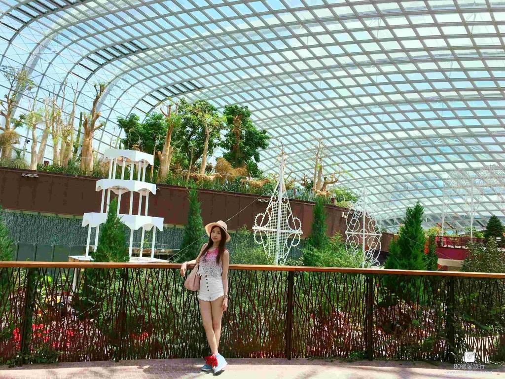 43_Flower Dome (41)_副本-01_mh1593267366711_compress7.jpg