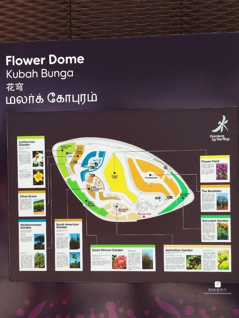 43_Flower Dome (15)_mh1593266042530_compress55.jpg