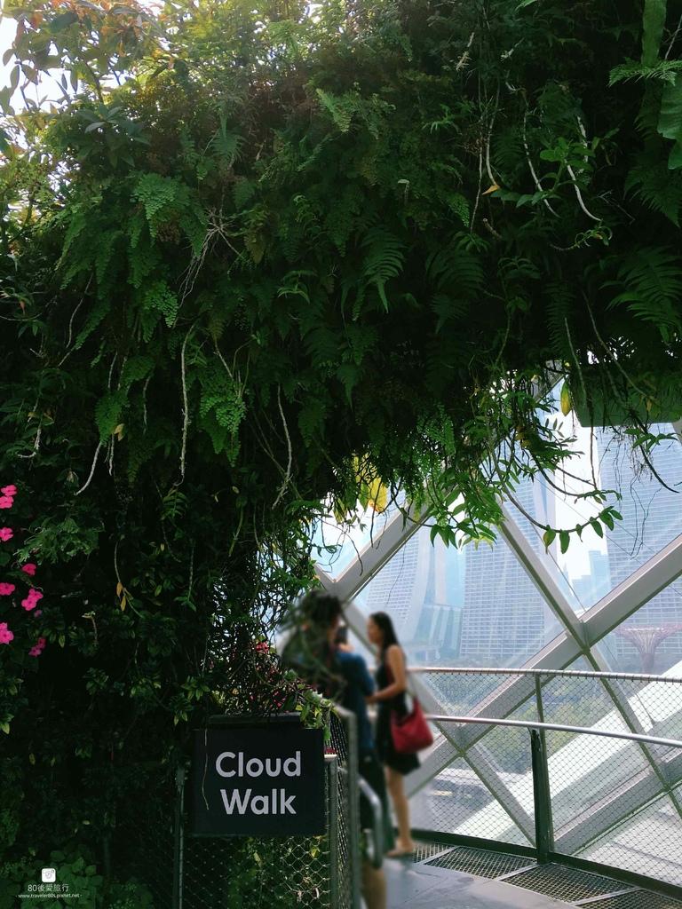 44_Cloud Dome (51)_mh1593325861942_compress78.jpg