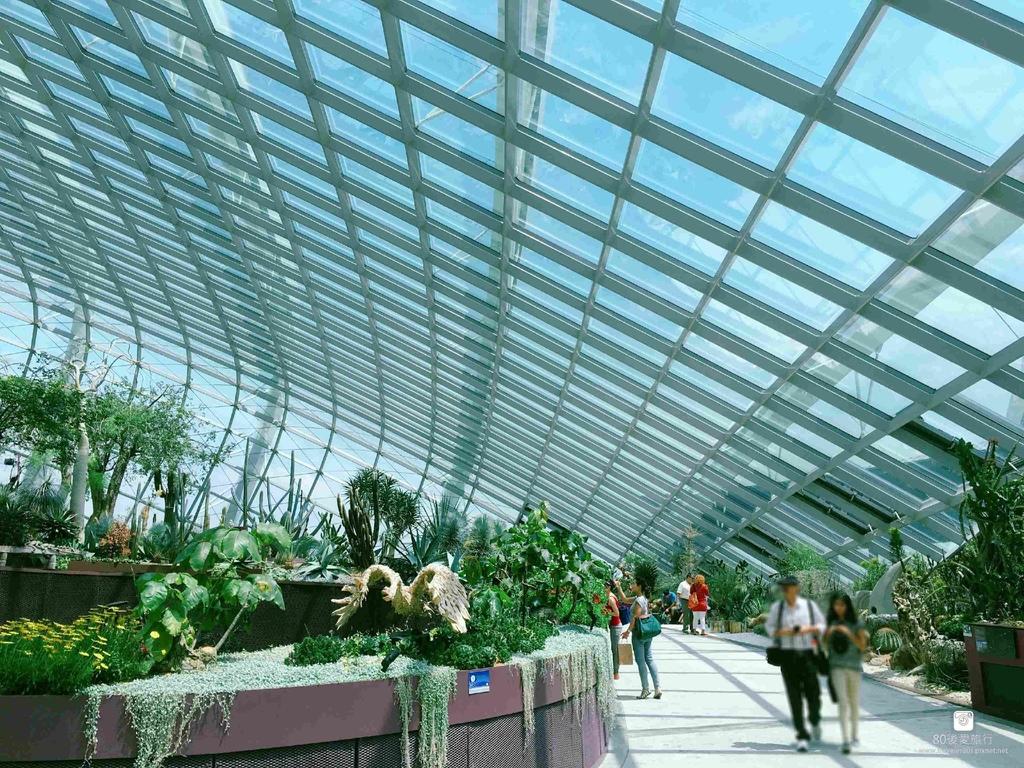 43_Flower Dome (12)_mh1593265718370_compress50.jpg