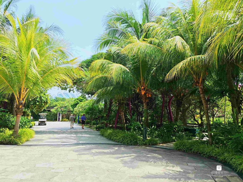 42_Garden by the Bay (30)_mh1593264519129_compress78.jpg