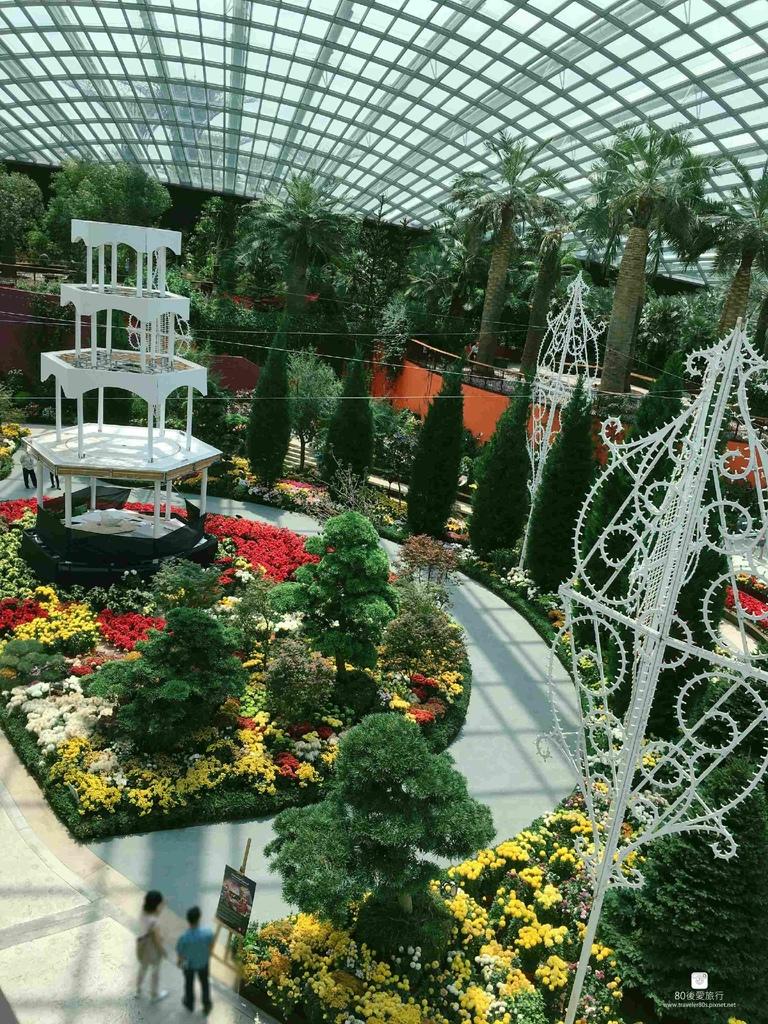 43_Flower Dome (177)_mh1593321609806_compress3.jpg