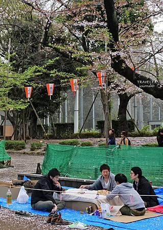 上野櫻花7.jpg
