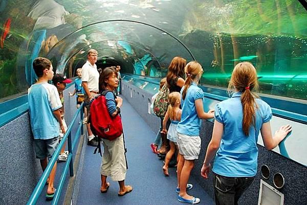 雪梨水族館