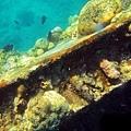 沉船架浮潛