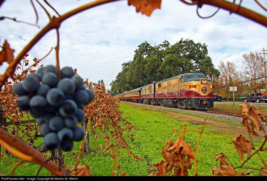 Napa Valley Wine Train3