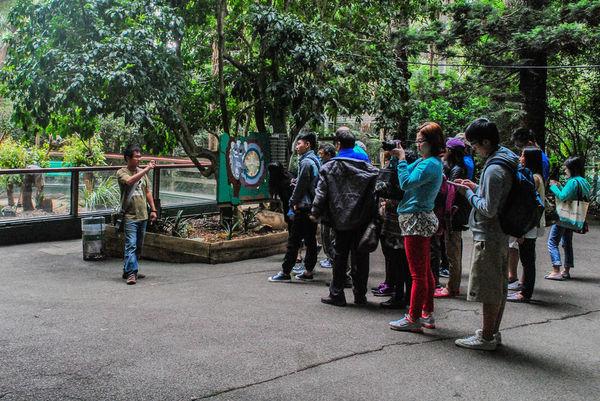 律律-Koala Park Sanctuary11