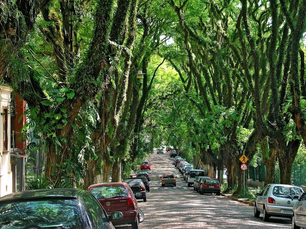 德卡瓦霍大街綠色隧道02