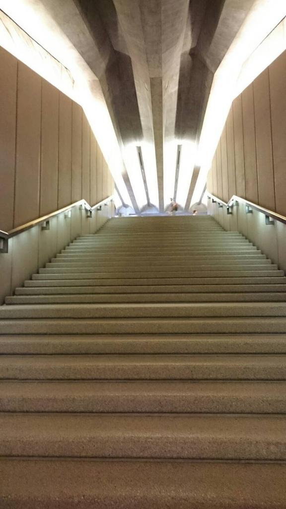 陳泓璋-雪梨歌劇院14