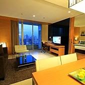 dlx living room