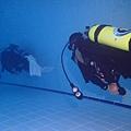 3-潛泳.JPG