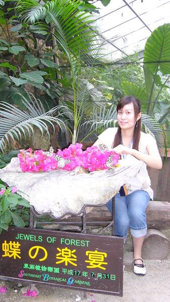20050731東南植物園蝴蝶房.JPG