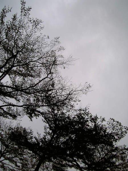 08-02-12_17-481.jpg