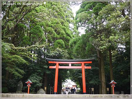 霧島神社1