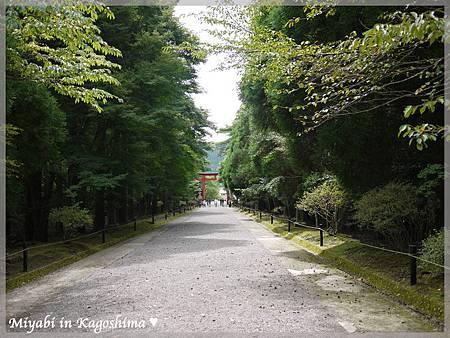 霧島神社12